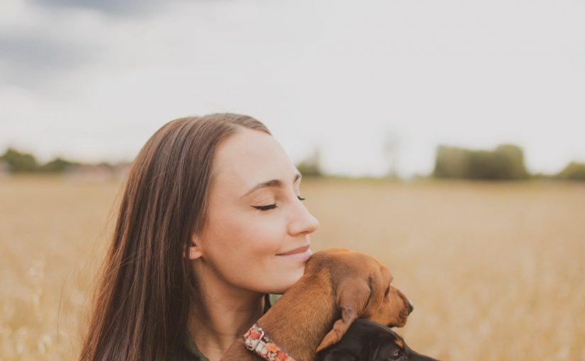 狗狗生病要怎麼辦?如何帶狗狗看病?